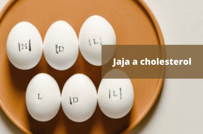 Czytaj dalej Jajka a cholesterol. Prawda o tym jak jajka na niego wpływają